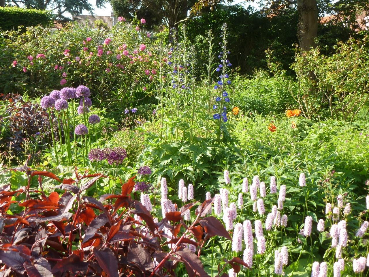 26- Jardin Mildred.jpg