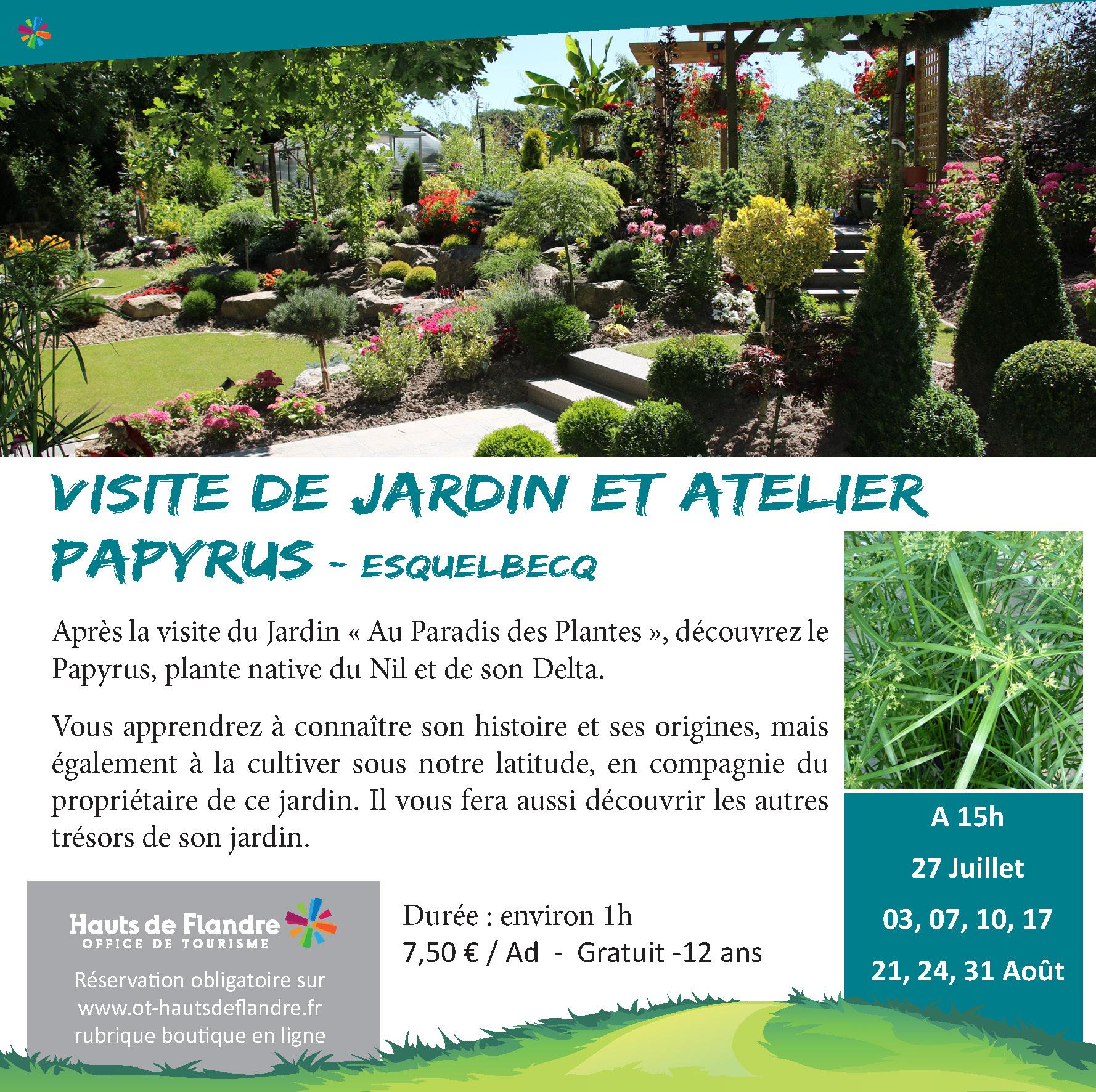jardin paradis des plantes et papyrus 2019.jpg