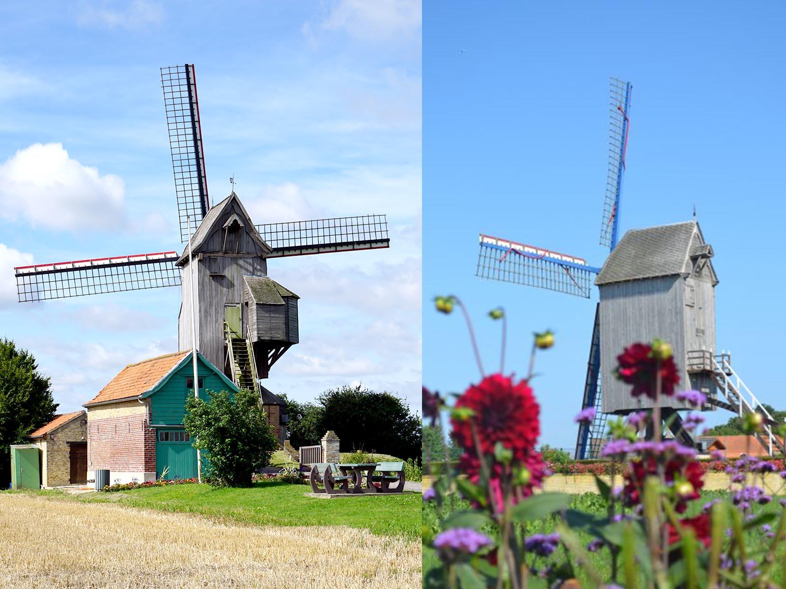 banniere-moulins-noordmeulen-spinnewyn.jpg