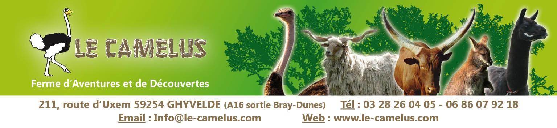 le camelus PUB 13 par 3 +info.jpg