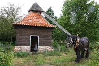 moulin-cheval-rosse-mulle (1).jpg