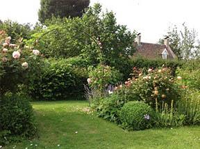 Mildrede jardin.jpg