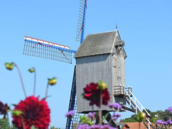 moulin-spinnewyn-1.jpg